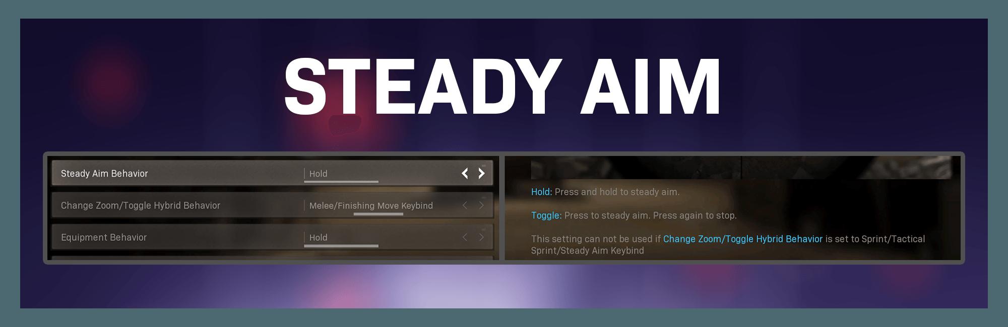 Banner showing the new Steady Aim Behavior menu option.